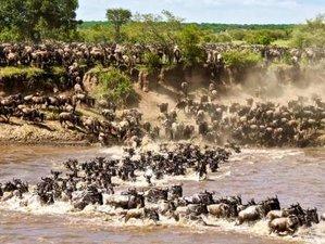 7 Day Amazing Wildebeest Migration Safari Tour in Northern Tanzania