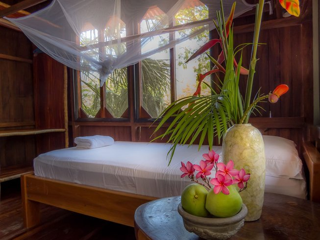 8 Days Surfing and Yoga Retreat Costa Rica