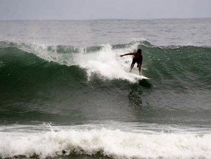 7 Days Surf Camp in Playa Dominical, Dominical, Costa Rica