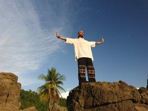 28 Days Formal Qigong Teacher Training Level 1 in San José, Costa Rica