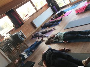 3-Daags Rawfood, Yoga en Detox Weekend in Staden