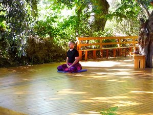 15 Tage Hatha Yoga und Qi Gong Retreat in Kalamos, Argalasti
