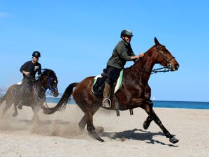 8 Day Mountain and Sea Horse Riding Holiday in Catalonia