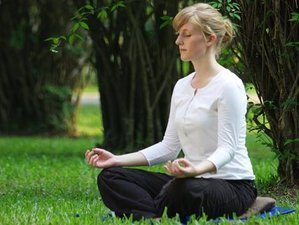 7 Day Mindful and Wellbeing Retreat with Yoga and Tai Chi Holiday in Busot, Alicante
