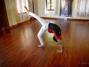 27 Days Transformational 200-Hour Yoga Teacher Training in West Bengal, India