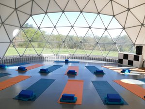 8 Days Yoga Retreat Neuvicq, South West France with Michèle Rafferty