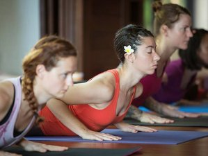 4 Days Yoga & Wellness Spa in Koh Samui, Thailand