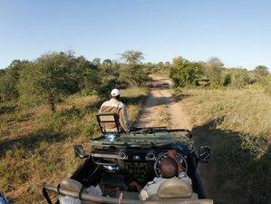 7 días de safari en Sudáfrica
