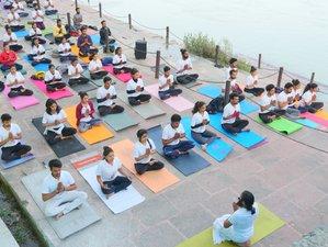 300-Hour D'vine Yoga Self-Paced Online Multi-Style Yoga Teacher Training