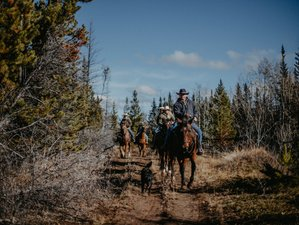 8 Day Horse Riding Ranch Package - Horseback Riding & Photo Tour Experience in British Columbia