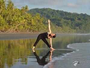 36 Day Pranaluz 300-Hour Advanced Yoga Teacher Training in Costa Rica
