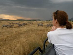 9 Days Luxurious Classic Safari in Tanzania