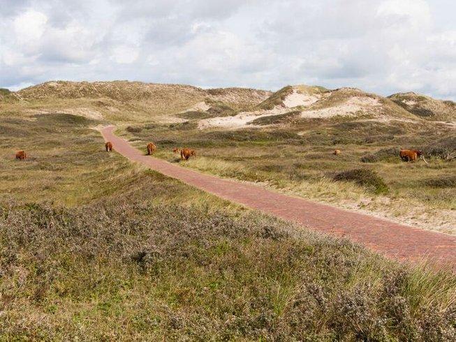 4 Days SUP Meditation & Yoga Beach Retreat in Wijk aan Zee, Netherlands