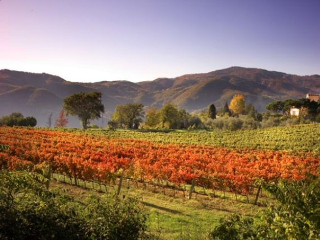 8 Days Wine Tasting & Cooking Holidays Italy