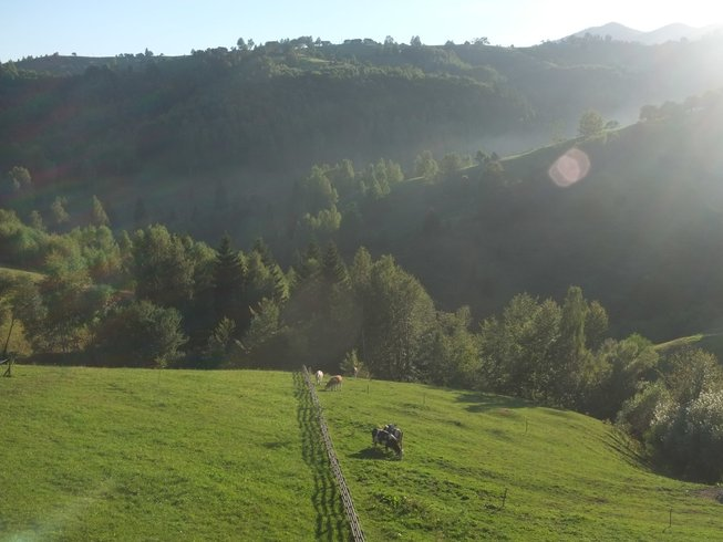 6 Days Meditation and Slow Flow Hatha Yoga Retreat in Transylvania, Romania