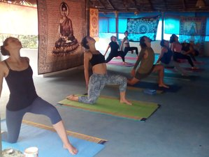 28 Day Yoga Teacher Training with 21 Days Ayurvedic massage in Varkala