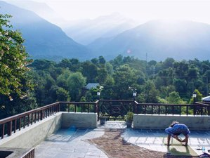 12 Day Life Changing Yoga, Culture, and Wildlife Conservation Journey in North India