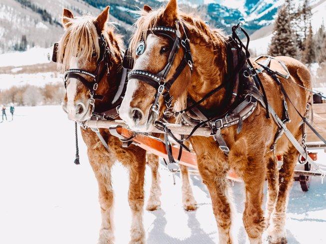 Christmas Riding Holidays