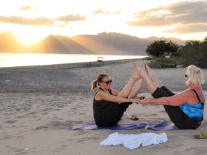 5 Days Sea of Cortez Cruise and Yoga Retreat in Mexico