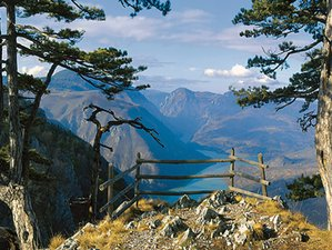 7 Tage Yoga, Musik, Massagen, Reiki und Natur in den wunderschönen Bergen Serbiens