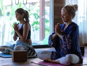 Self-Paced 20-Hour Online Pranayama and Meditation Teacher Training Course