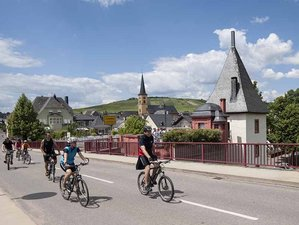 7 Days Picturesque River Moselle Cycling Tour in Germany