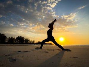 7 Day Wild Island Yoga Holiday in Mafia Island