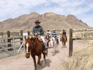 6 Days Fun Ride and Ranch Vacation in Portal, Cochise County, Arizona