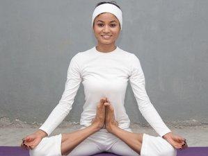 21 Days 200 hours Yoga Teacher Training in Rishikesh