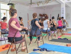56 Day 500 Hour Intense Multi-Style Yoga Teacher Training in Rishikesh