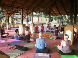 7 Day Yoga and Ayurveda Retreat in a Serene Environment in Goa