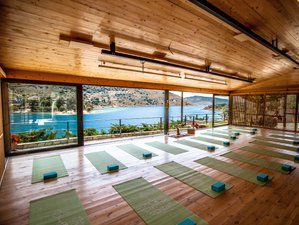 25-day 300-Hour Advanced Yoga Teacher Training in Vinyasa Yoga, August, Evia Island, Greece