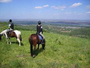 7 Days Fruska Gora Horse Riding Holiday in Vojvodina, Serbia