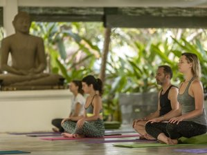 5 Day Online Personalized Yoga and Meditation Retreat with Ayurvedic Guidance