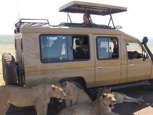 6 Days Amazing Camping Safari in Arusha, Tanzania