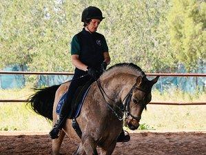 4 Day Trail and Training Horse Riding Holiday in Carmona, Sevilla
