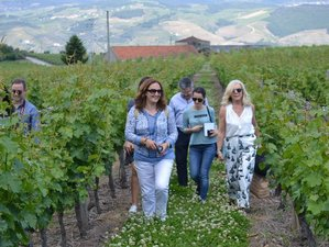 3 Days Wine and Boat Holiday in Douro Valley, Portugal
