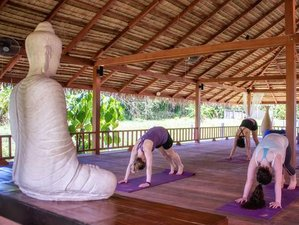 9-Daagse Fitness en Yoga Retraite in Thailand