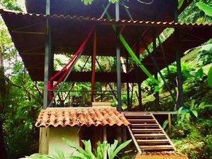 8 Day Aerial Silk, Yoga, and Surf Holiday in Santa Teresa, Puntarenas