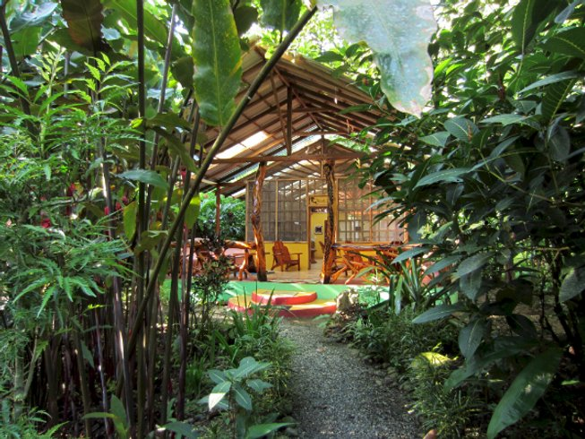 3 Days Coco  Cleanse & Yoga Retreat in Costa Rica