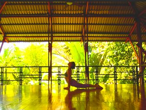 7 Days Restorative Vinyasa Yoga Retreat in Costa Rica
