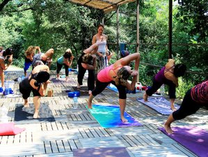 22 Days 200-hour Vinyasa Yoga Teacher Training in Ibiza, Spain