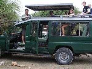 7 Days Camping and Big Five Safari in Tanzania