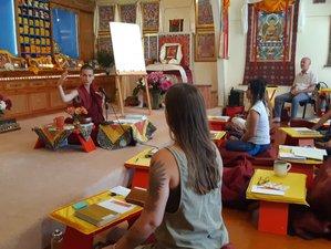 8 Day Silent Tibetan Buddhist Meditation Retreat in Coromandel