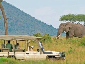 5 Days Budget Safari in Tanzania