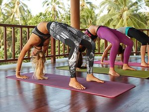 21 Day 200-Hour Ayurveda and Yoga Teacher Training Course in Nosara, Guanacaste