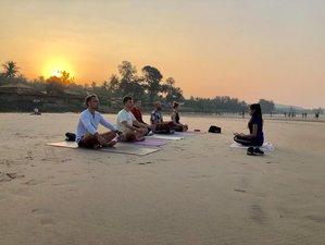25 Day 200-hour Yoga Teacher Training in Mandrem, Goa