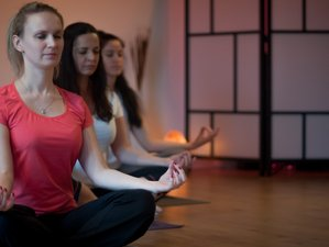 3 Days Pranayama, Meditation, and Yoga Retreat in Groningen, Netherlands