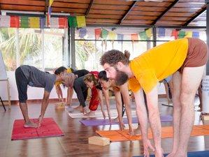 24 Days 200-Hour Ashtanga Vinyasa Yoga Teacher Training in Blissful Goa, India