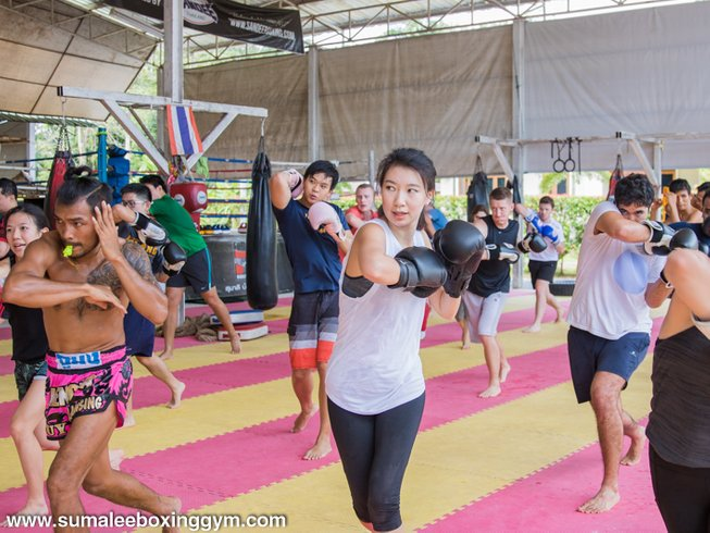 8 Days Muay Thai Training and Yoga Retreat in Phuket, Thailand